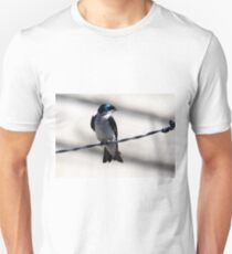 Bird on a Wire... T-Shirt