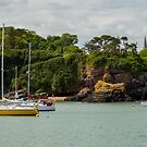 Yellow Sailboat in Waterford Ireland Harbor by DARRIN ALDRIDGE