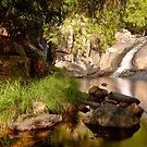 Cedar Creek Falls by David de Groot