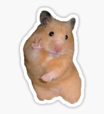 Peace Sign Hamster Sticker