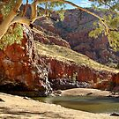 Ormiston Gorge,West McDonell Ranges,N.T. by Joe Mortelliti