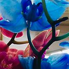 Yes to Orchids  by Mary Kaderabek-Aleckson