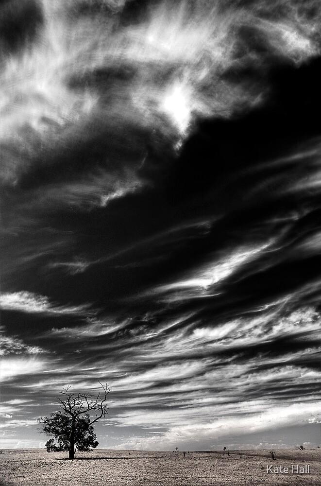 Desolate  by Kate Hall