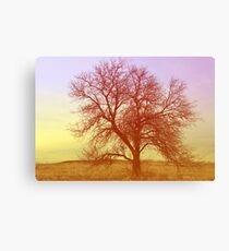 Tree - Saratoga Springs, Utah Canvas Print