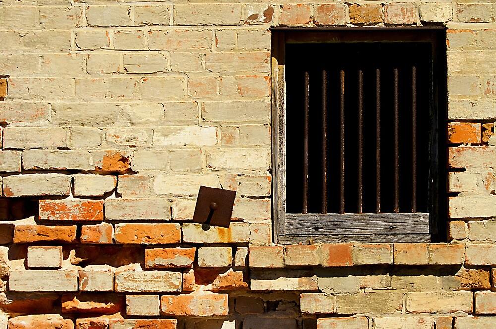 Ageing Wall - Rockhampton Australia by Gryphonn
