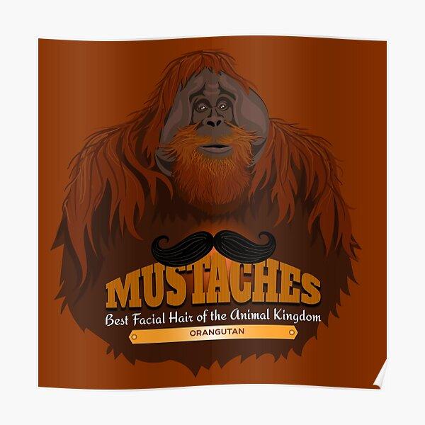 Mustaches: Orangutan Poster