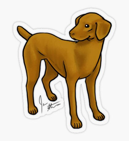 Vizla Transparent Sticker