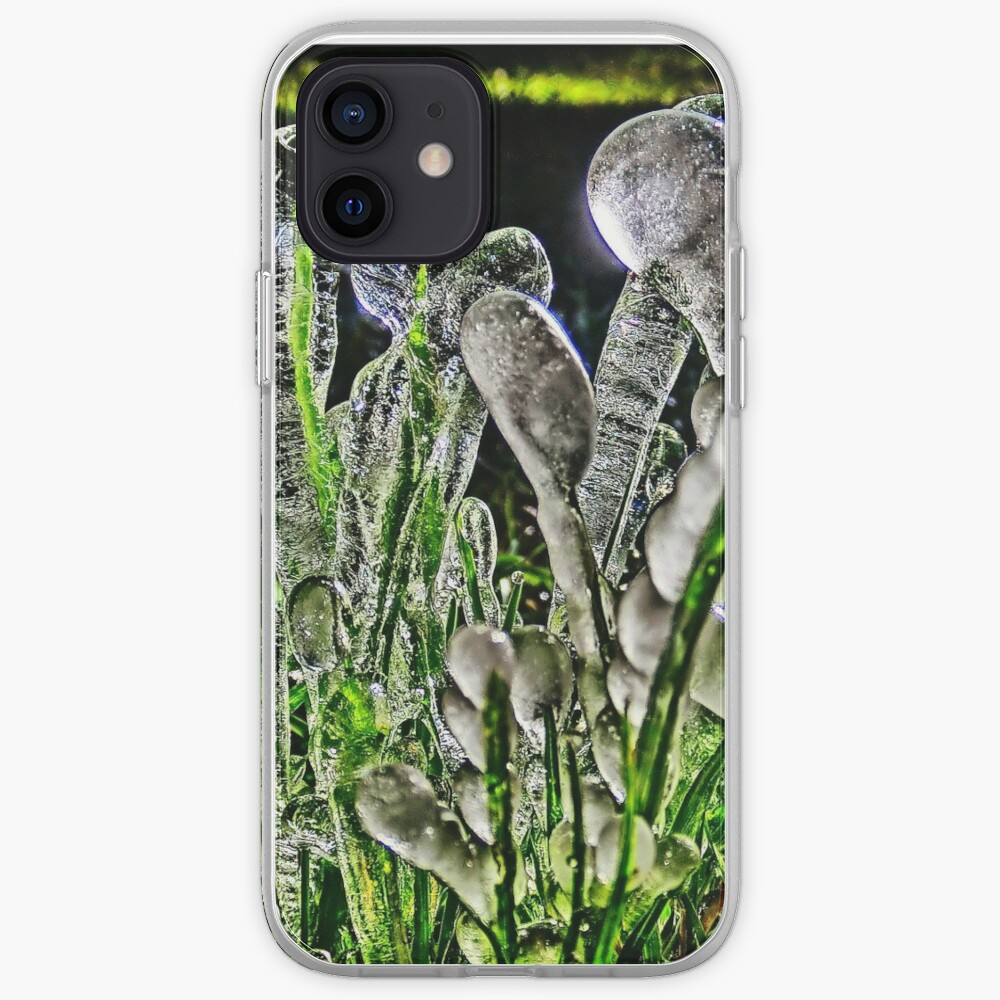 Rare Ice Migration Photograph iPhone Case & Cover