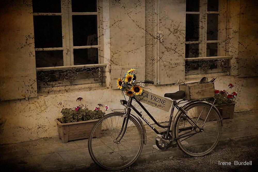 La Vigne by Irene  Burdell