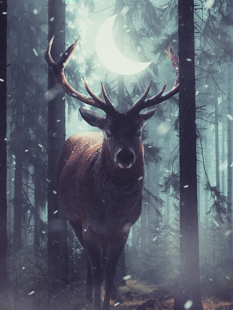 Forest Dweller by sublimenation