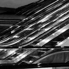 Escalators by Barbara  Brown