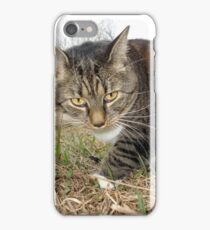 Lucy Lawns iPhone Case/Skin