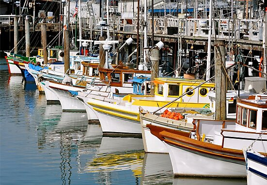 Colorful Tugs in a Row by Cheryl  Lunde