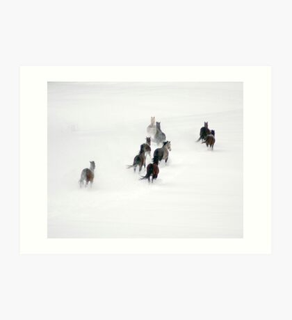After the Blizzard 20 Art Print