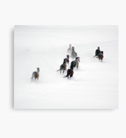 After the Blizzard 20 Canvas Print