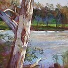 Portrait of a River Gum by Lynda Robinson