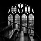 University Church of St Mary the Virgin by Irina Chuckowree