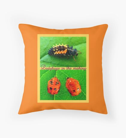 Ladybugs in the making Throw Pillow