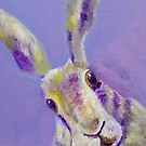 Cute Purple Hare with Gorgeous Big Eyes by carolineskinner