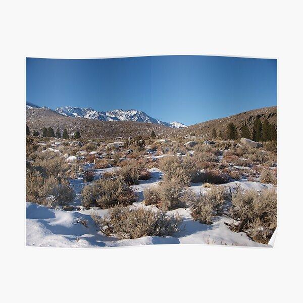 More Snow in the Desert Poster