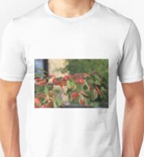 Colorful Fall Kansas Leave's Closeup Unisex T-Shirt