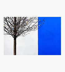 White and Blue Photographic Print
