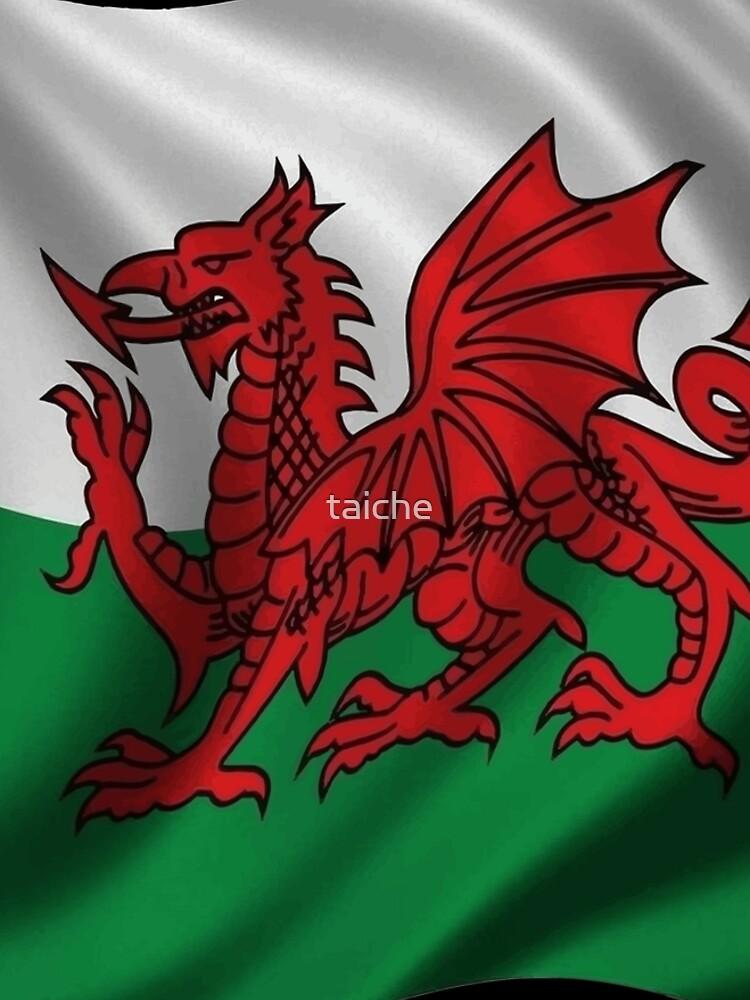 Y Ddraig Goch Welsh Flag Rugby Union  by taiche