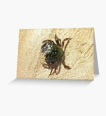 Scottish Crab - Wester Ross Greeting Card
