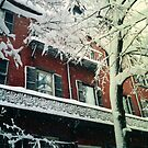 Winter on West Cedar by OntheroadImage