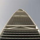 Faisaliah Tower, Riyadh  by Elvira