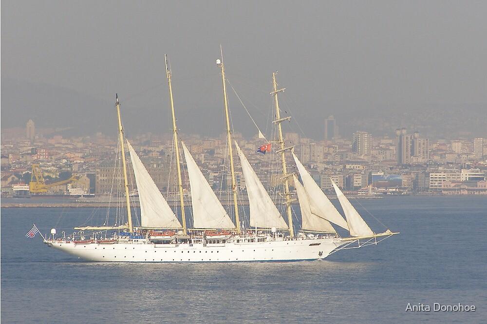 Sailing the Bosphorus by Anita Donohoe