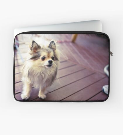 Princess Molly Laptop Sleeve