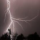 Lightning Strike by Mark Hamilton