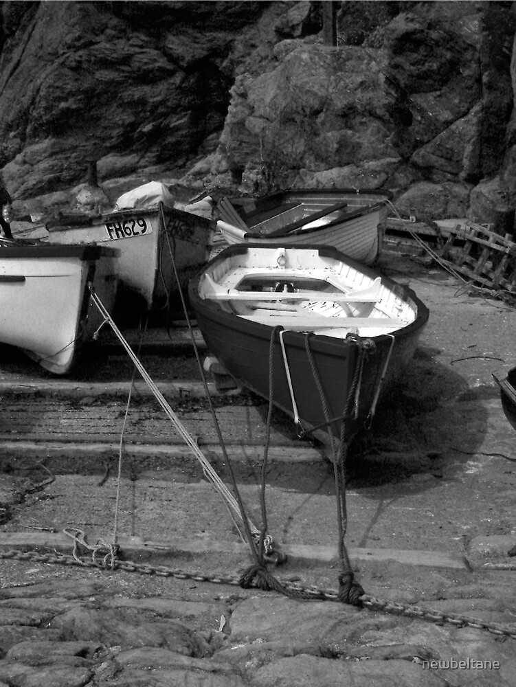 Lizard boats by newbeltane