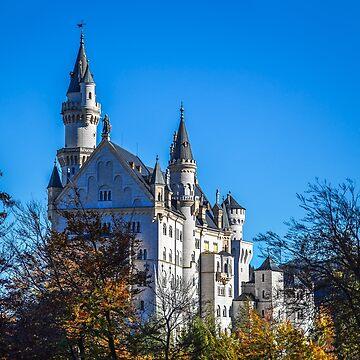 Germany. Bavaria. Neuschwanstein Castle. by vadim19