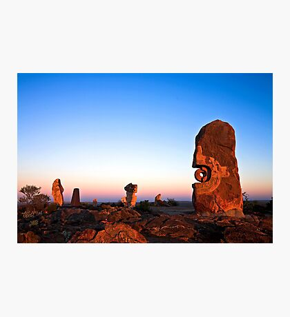 The Living Desert Photographic Print
