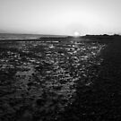 Sunset at Cudmore Grove, East Mersea, Essex, England by newbeltane