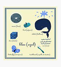 Colors: blue (Los colores: azul) Photographic Print
