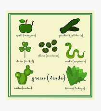 Colors: green (Los colores: verde) Photographic Print