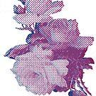 digital roses  by SJohnsonartist
