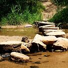 Stepping stones by su2anne