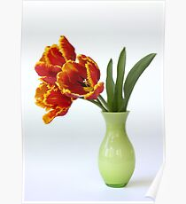 three parrot tulips in green vase Poster