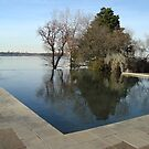 Reflective Pool at the Dallas Arboretum by Susan Russell