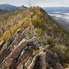 Ridge Track - Cathedral Ranges by Timo Balk