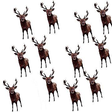 Deer by kjhart8