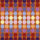 Warm berry colors hexagon quilt blocks by goanna
