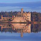 Castle Island. Lough  Key. Roscommon . Ireland by EUNAN SWEENEY