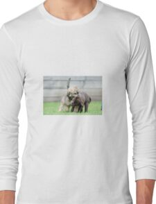 Puppies playing Long Sleeve T-Shirt