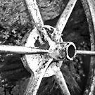 Wheel by wildone