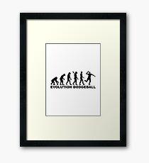 Evolution Dodgeball Framed Print